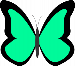 Butterfly Net Clipart | Clipart Panda - Free Clipart Images