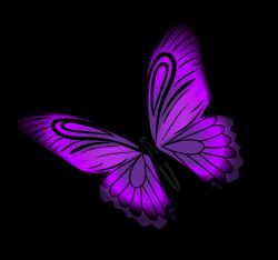 Purple Butterfly Clip art - Purple Butterfly PNG Clip Art 8000*7512 ...
