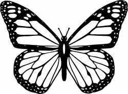 Clipart - Black And White Butterfly
