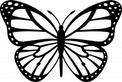 Butterfly Line Drawing at GetDrawings.com | Free for personal use ...