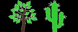 Gilbert Tree Trimming & Tree Removal   Tree Service Gilbert AZ