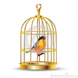 cage cartoon | Golden Bird Cage With Bird Inside Royalty Free Stock ...