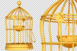 Cage - 3D Render PNG ~ Graphics ~ Creative Market