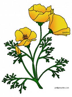 california poppy clip art - Google Search | flower tattoo ...