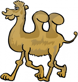 Camel clipart animated - Pencil and in color camel clipart animated