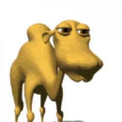 Camel GIF - shared by Rainstalker on GIFER