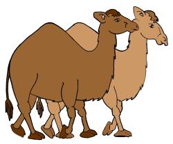 Camel clip art vector camel graphics image - Clip Art Library
