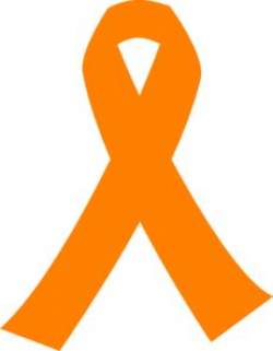 Understand the Anatomy of the Spinal Cord | Leukemia awareness ...