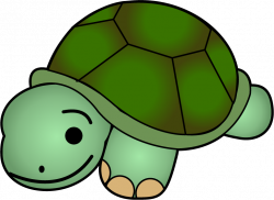 Turtle Free Clipart