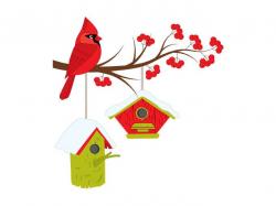 Christmas Cardinal On Branch Clipart - Digital Vector Cardinal, Bird ...