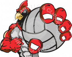 Cardinal holding volleyball