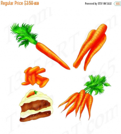 Carrot clipart baby carrot - Pencil and in color carrot clipart baby ...