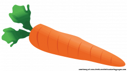 20 Incredible Carrot Vegetables Clipart - Fruit Names A-Z With Pictures