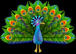 Cartoon Peacock Clipart