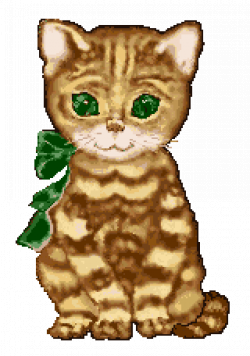▷ Cats: Animated Images, Gifs, Pictures & Animations - 100% FREE!