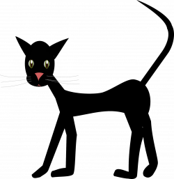 cat images, clip art, png with transparent background, cut out cats ...