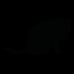 Cat Silhouette | Silhouette of Cat