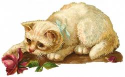 Free Vintage Cat Clip Art - Vintage Holiday Crafts