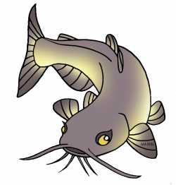 28+ Collection of Hito Fish Drawing | High quality, free cliparts ...