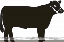 Beef Cow Drawing at GetDrawings.com   Free for personal use Beef Cow ...