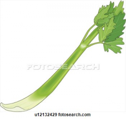 Cut Celery Clipart