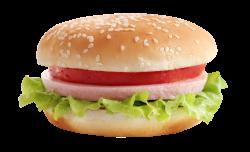 Burger PNG Transparent Images   PNG All