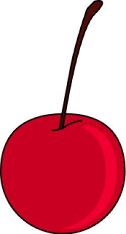 Cherry Stem Clipart