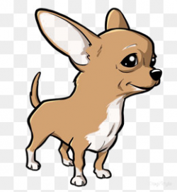 Chihuahua Png, Vectors, PSD, and Clipart for Free Download | Pngtree