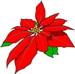 Free Poinsettias Cliparts, Download Free Clip Art, Free Clip Art on ...