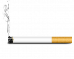 28+ Collection of Cigarette Clipart Transparent | High quality, free ...