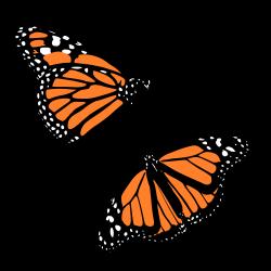 OnlineLabels Clip Art - Monarch Butterflies