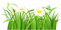 Grass clip art free free clipart image 5   Floral Delight ...