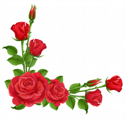 Red Roses Transparent PNG Clipart | Png | Pinterest | Red roses ...