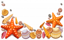 Clipart Sea Shells at GetDrawings.com | Free for personal use ...