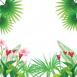 Tropical Leaves Flowers Frame, Tropical, Flowers PNG and Vector for ...