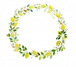 images for floral wreath with transparent background - Google Search ...