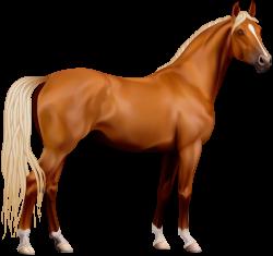 Transparent Horse PNG Clipart   ANIMALS CLIP ART   Pinterest   Horse ...