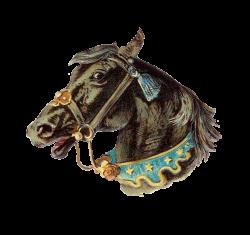 Vintage Horse Valentine | Vintage Horse Clip Art: Victorian Die Cut ...