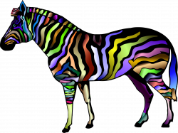 Zebra Print Clipart at GetDrawings.com | Free for personal use Zebra ...