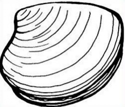 Clam Clipart | Clipart Panda - Free Clipart Images