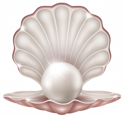 Beautiful Clam with Pearl PNG Clipart Image | ClipArt | Pinterest ...