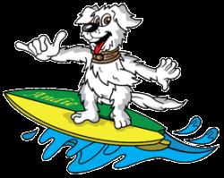 Animal Hotel Pet Boarding Williamsburg - James City County