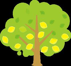 lemon tree clipart | Lemon | Pinterest | Tree clipart
