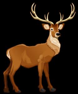 Brown Reindeer PNG Clipart Picture | ANIMALS CLIP ART | Pinterest ...