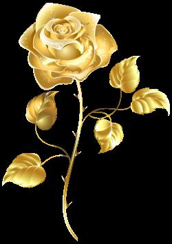 Beautiful Gold Rose PNG Clip Art Image | Luoghi da visitare ...