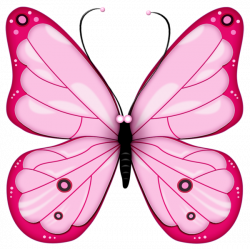 Pink Transparent Butterfly Clipart   Cliparts   Pinterest ...