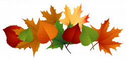 Autumn Leaves Pile Clip Art Fall Leaves Png Picture - Clipart Kid ...