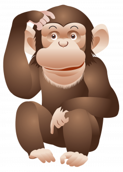 Monkey PNG Image | Gallery Yopriceville - High-Quality Images and ...