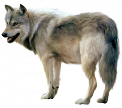 Painted Wolf Clipart   animals   Pinterest   Wolf clipart