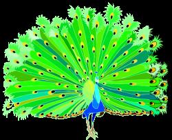Free peacock clipart 5 - Clipartix